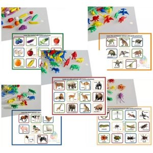 Educational Counters