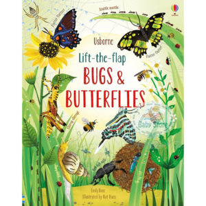 Usborne Lift The Flap Bugs and Butterflies